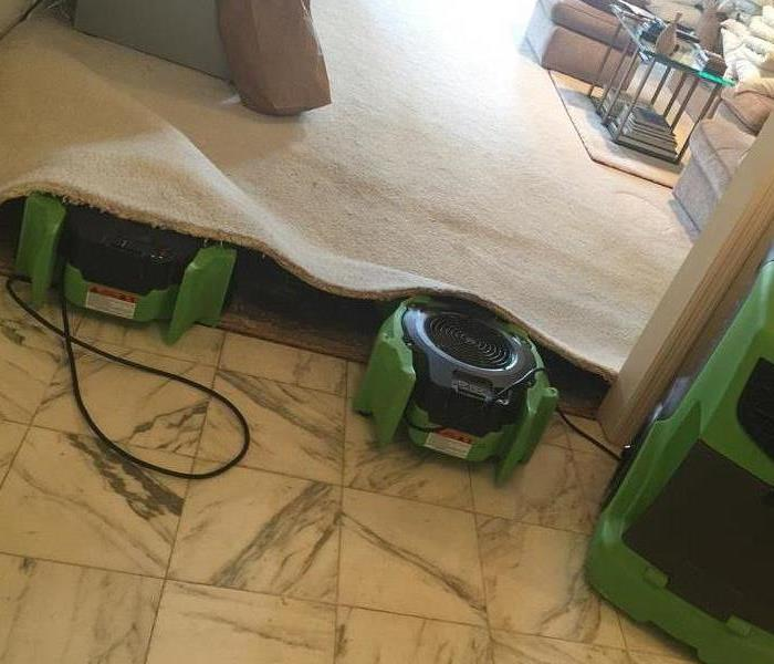 Carpet Wet? Its not the End! After