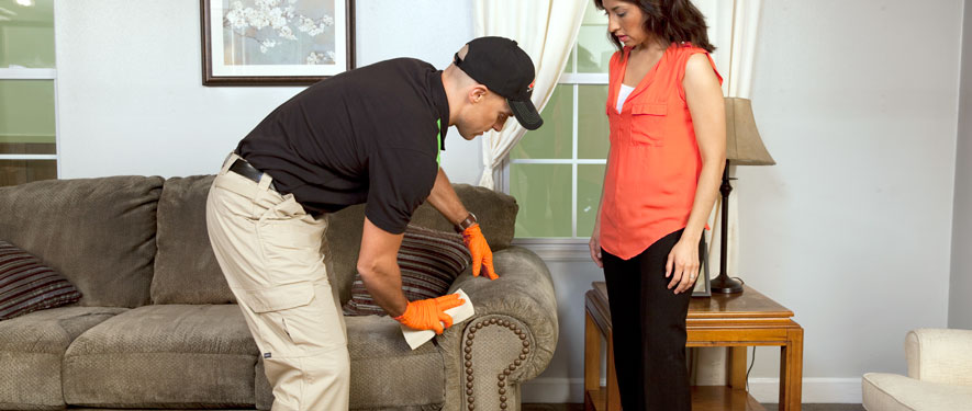 La Brea, CA carpet upholstery cleaning